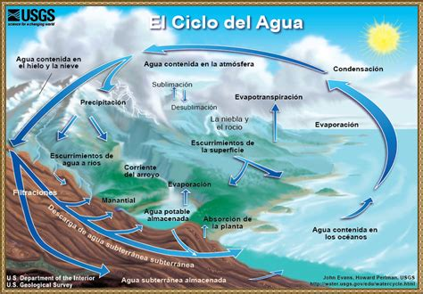 El Ciclo Del Agua (the Water Cycle) Organización De Las