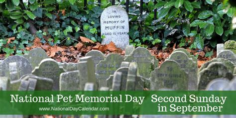 national pet memorial day sunday september national day