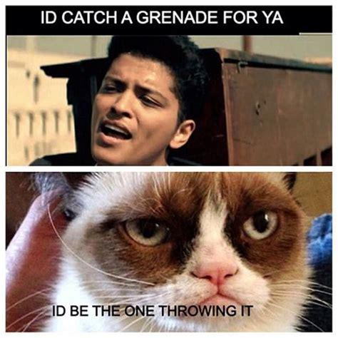 New Grumpy Cat Memes - 9 new grumpy cat memes