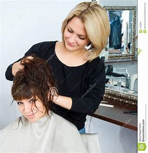 Hair Stylist In Work Royalty Free Stock Image - Image ...
