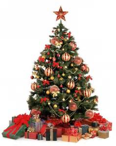christmas trees origins and traditions in the world hotelsclick com