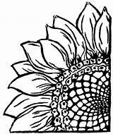 Sunflower Linocut Lino Cut Doo Woodle Mine sketch template