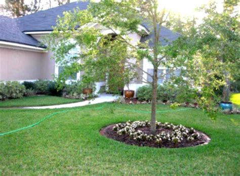 cheap landscaping ideas front yard landscaping designs on a budget for contemporary home homelk com