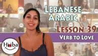 Learn Lebanese Arabic With Hiba Najem  The Website Of The Lebanese Arabic Youtube Channel