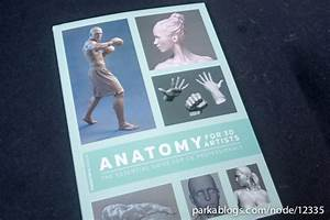 Book Review  Anatomy For 3d Artists  The Essential Guide