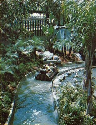 busch gardens lost and found 21 best busch gardens images on nuys san