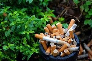 Environmental Impact of Smoking and Tobacco use  Environmental Tobacco Smoke Secondhand Smoke
