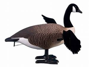 Higdon Full Body Canada Goose Decoy Reviews Canada Goose Trillium Parka Outlet Shop