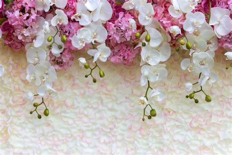 fotooboi tsvety na stenu kupit fotooboi  tsvetami