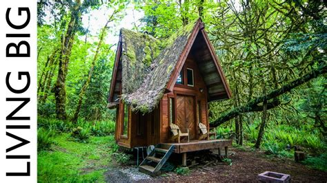 enchanting cabin   forest youtube