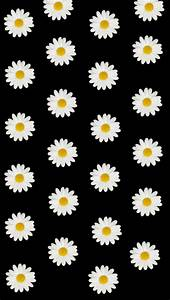 daisy-wallpaper | Tumblr