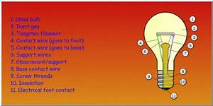 Explain The Structure Of Bulb - Science - Electricity And Circuits