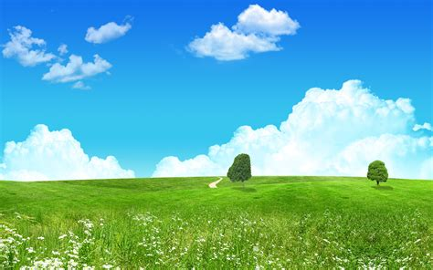 Lovely Green Landscape Wallpapers | HD Wallpapers | ID #4823