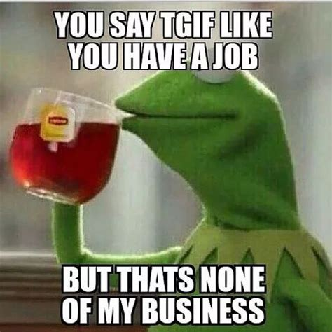 Tgif Meme Funny - 224 best kermit the frog images on pinterest funny memes funny stuff and hilarious