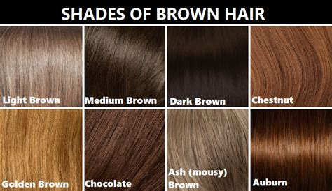 Brown Shades Of Hair realrandomsam smaugnussen goddessofsax how to