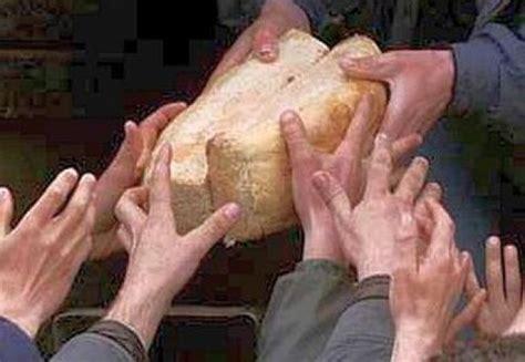 Polonia devine cea de-a 8-a tara europeana care interzice cultivarea OMG-urilor pe teritoriul sau! - Apărătorul Ortodox