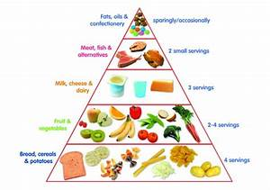 Toddler Food Pyramid – First 1000 Days