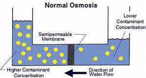How Does Reverse Osmosis Work