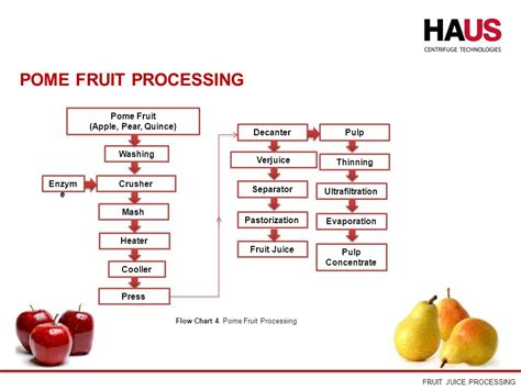 fruit juice processing  video