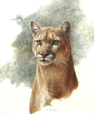 paintings  cougars acrylic google search realistic