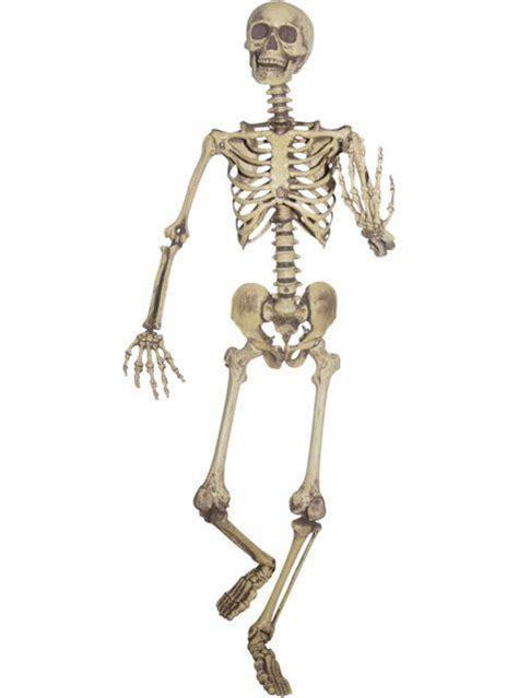life size fake skeleton spooky decoration mikes magic
