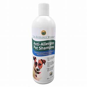 allergies in dogs common types symptoms testing With dog shampoo for allergies