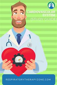 Cardiovascular System  Overview  Study Guide  And Practice