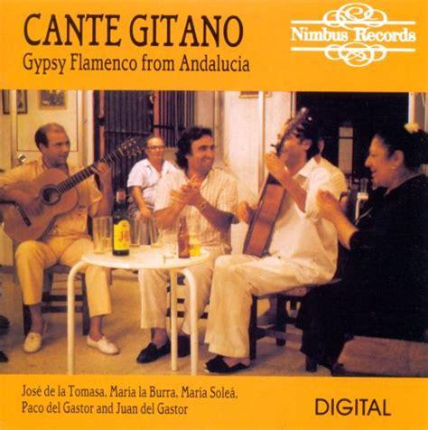 flamenco andalucia gypsy allmusic stream