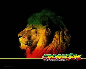 HD Rasta Wallpapers 2017 - Wallpaper Cave