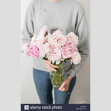 Süße Und Schöne Pfingstrose Blüten In Frauenhand Viele
