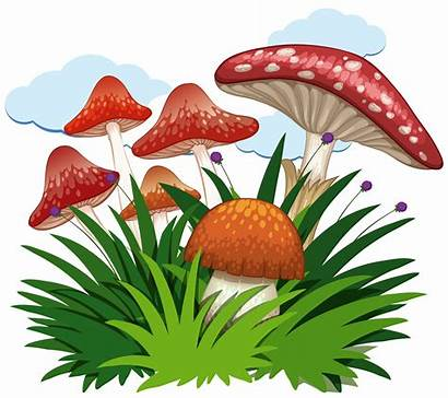 Mushrooms Garden Background Vector Clipart Template Notepad