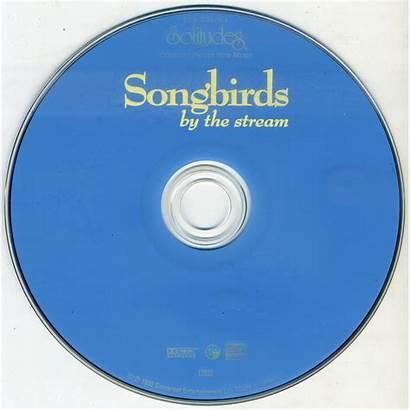 Songbirds Stream Sound Nature Collection Album Gibson