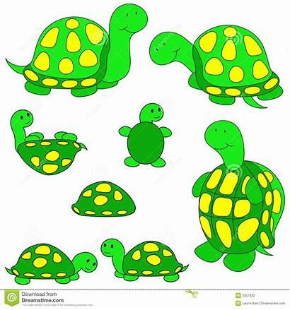 Turtle Turtles Clip Sea Clipart Drawing Illustration