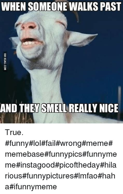 Meme Xx - 131 funny funny true and xx memes of 2016 on sizzle