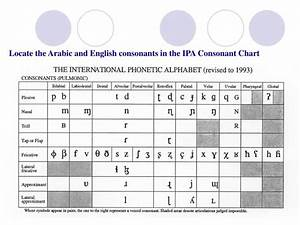 Arabic Ipa Chart Ppt British Rp Bbc Vs American Ga Consonants And