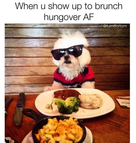 Brunch Memes - 31 brunch memes that will make you spit out your mimosa from laughing