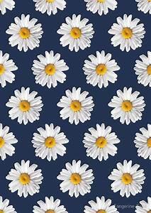 """""""Daisy Blues #2 - Daisy Pattern on Navy"""" by Tangerine-Tane"""