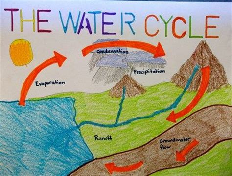 lyons class water cycle illustration  art