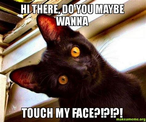 Hi There Meme - hi there do you maybe wanna touch my face overly attached cat make a meme