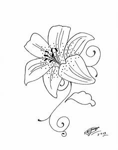 25 best Tiger Lily Tattoo Drawings images on Pinterest ...