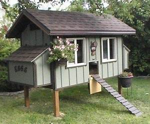 Cabane Pour Poule : avoir des poules dans son jardin projet poulettes ~ Premium-room.com Idées de Décoration