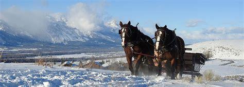 Sleigh Rides Spring Creek Ranch Jackson Hole Wyoming