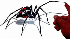 How to Draw a Realistic 3D Giant Black Widow Spider!, My ...