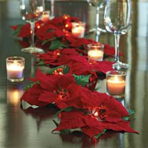 joys of christmas on pinterest poinsettia christmas