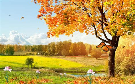 Animated Beautiful Nature Wallpaper - beautiful nature animated wallpaper