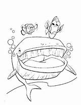 Squirt Coloring Finding Pages Nemo Getdrawings sketch template