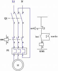 Moteur Triphasé En Monophasé : d marrage direct d 39 un moteur monophas par disjoncteur avec interrupteur schema electrique ~ Maxctalentgroup.com Avis de Voitures