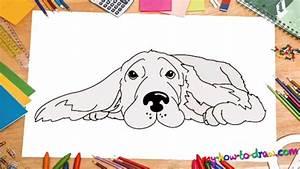 How To Draw A Cocker Spaniel My Ho To Draw