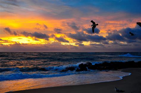 boynton beach sunrise sunsetfl photo weather underground