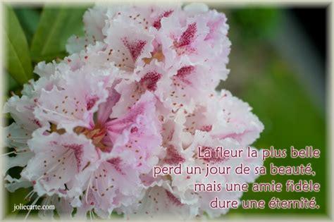 Bateau Mouche Gratuit Pour Anniversaire by Belles Images Sur L Amiti 233